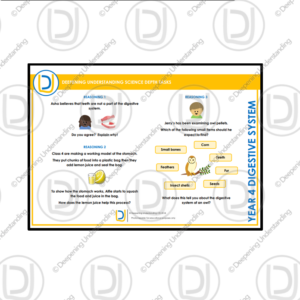 YR4 Science Depth Tasks – Digestive System