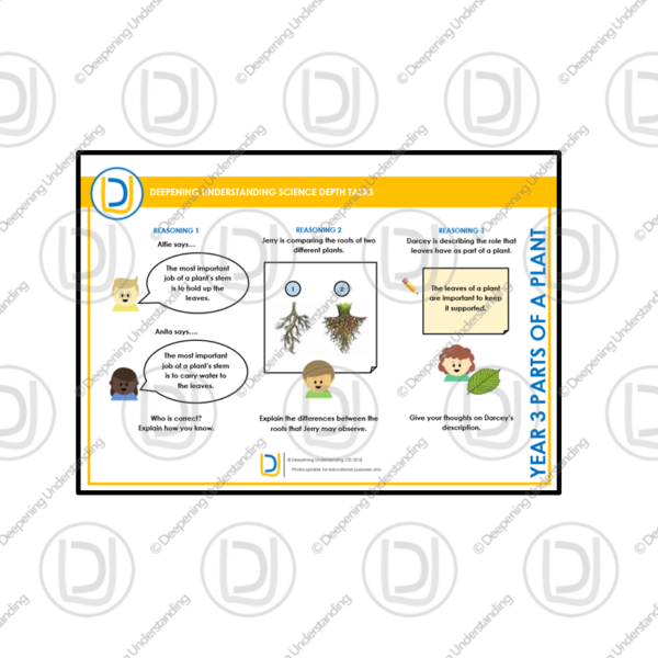YR3 Science Depth Tasks – Parts of a Plant